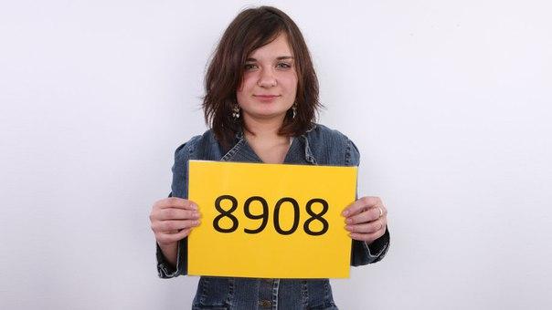 jirina 8908 casting